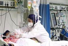 افزایش بیسابقه ابتلای مادران باردار به بیماری کووید۱۹ در پارسیان