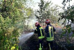 آتش سوزی گسترده در جنگل شهر صنعتی رشت