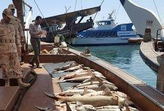 توقیف لنج متخلف با بیش از1000 متر تور غیرمجاز و 60 کیلو ماهی در ابوموسی