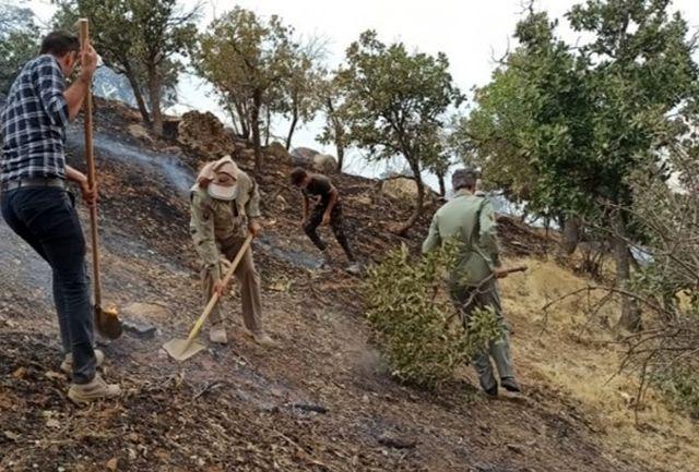 آتش سوزی در منطقه حفاظت شده کوه دیل مهار شد/اعلام دلیل آتشسوزی