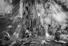 عکاسی و عکاسان از نگاه فیلمسازان در «تصویر سال»