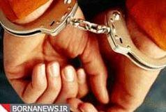 دستگیری 3 عامل ارتباط با شبکه های معاند در فارس