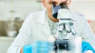 ویروسشناسان روس از همه خصوصیات ویروس کرونا رمزگشایی کردند