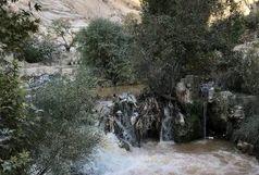 نمایان شدن چشمههای عجیب و جدید بعد از زلزله در کرمانشاه