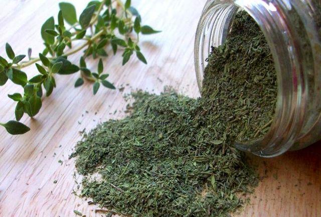 گیاهی که در درمان سرفه، شاهکار می کند