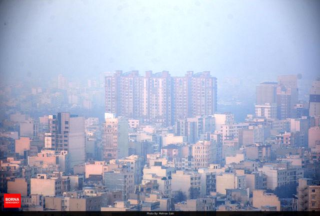 مواد غذایی موثر در مهار آلودگی هوا
