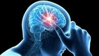 چگونه مغز رمز گشایی می کند؟
