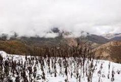 تداوم بارش ها در مازندران