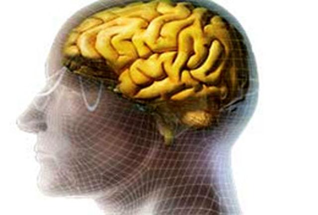 هشدار پزشکان در مورد لطمات ورزش غیر اصولی بر مغز و اعصاب