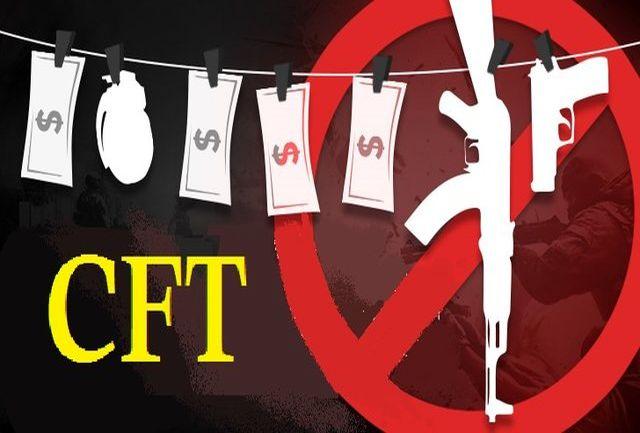 لایحه CFT برای تامین نظر شورای نگهبان اصلاح شد