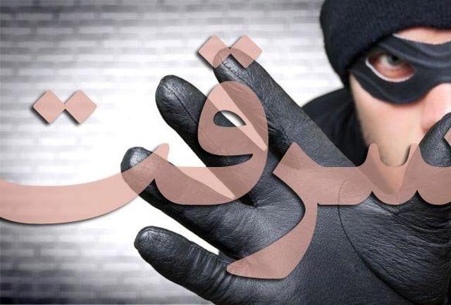 کشف ۹ فقره سرقت مسلحانه در جنوب شرق کشور