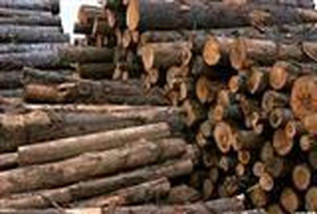 پلیس امنیت به ماجرای قاچاق چوب وارد می شود