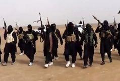 دو سرکرده داعش دستگیر شدند