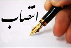 سرپرست معاونت آموزش نیروی انسانی آموزش و پرورش استان کرمان منصوب شد