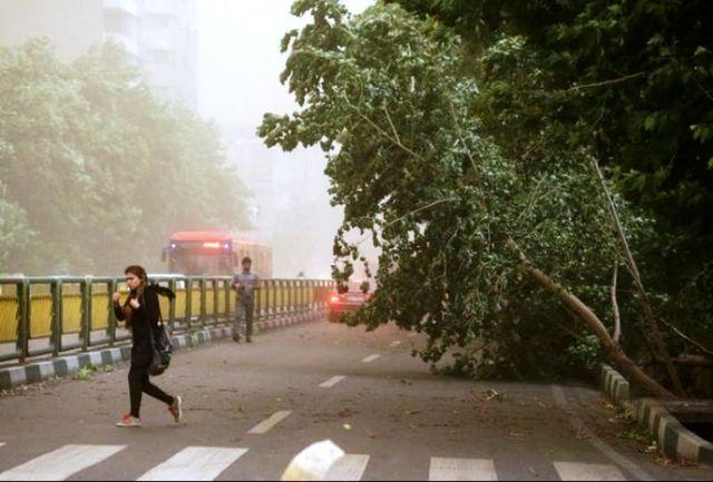 وزش باد شدید در راه استان تهران