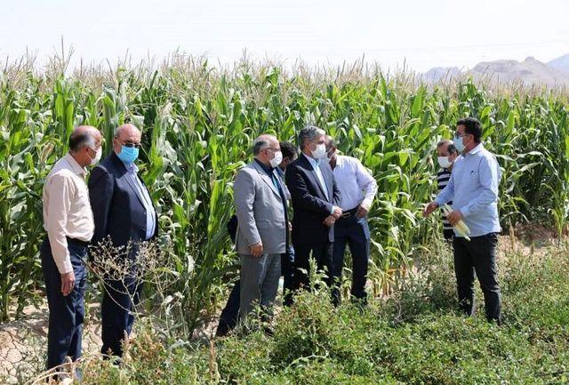 ساماندهی زاینده رود برنامه اصلی مدیریت توزیع آب کشاورزی اصفهان است