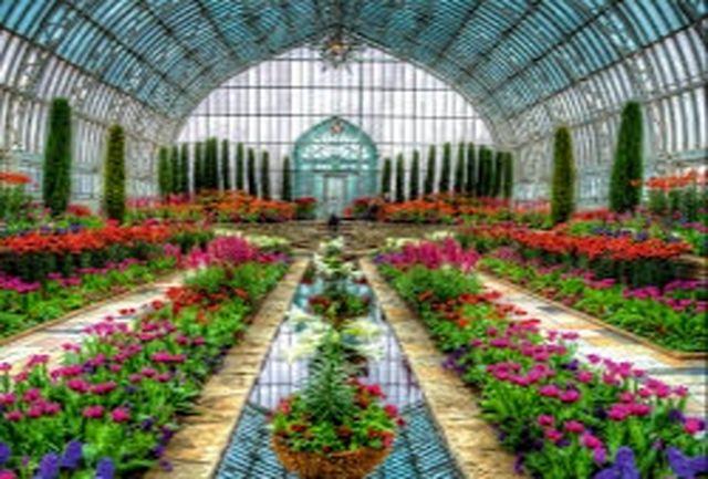 احداث چهار هکتار گلخانه در کهگیلویه و بویراحمد