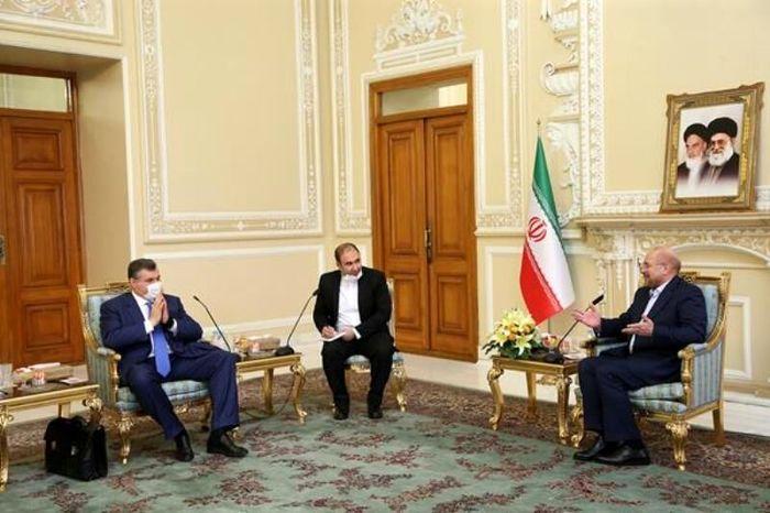 آماده همکاریهای پارلمانی گسترده با روسیه هستیم