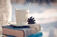 سمنانیها ۱.۶ میلیارد ریال در طرح زمستانه کتاب خریدند