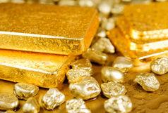 قاچاق طلا با پنهان کردن در دهان
