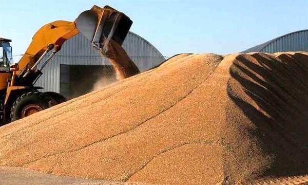 توقیف محموله گندم هنگام خروج غیرمجاز از گلستان