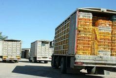 کشف بیش  از 18 تن  مرغ  قاچاق در  دهلران