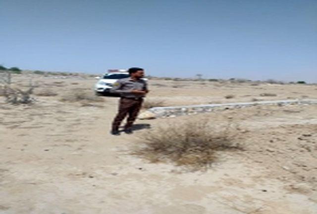 رفع تصرف اراضی ملی منطقه دمیلو در  بندرعباس