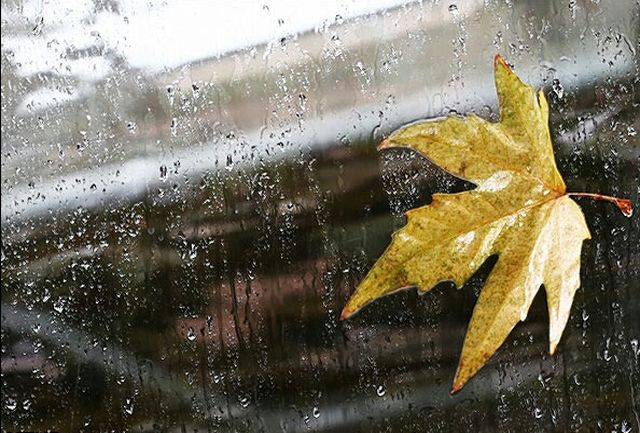 ثبت ۵.۳ میلیمتر بارندگی در کشور تا پایان هفته دوم آبان