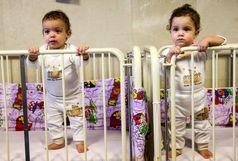 موقر: ۹۵ درصد از کل متقاضیان فرزندخواندگی خواهان فرزند دختر هستند