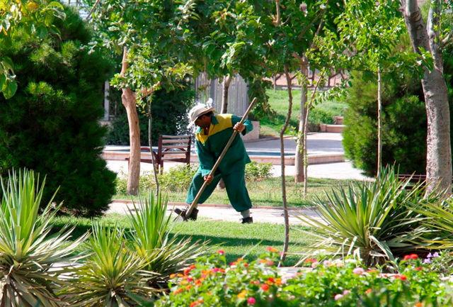 سموم مورد استفاده برای سم پاشی درختان شهر با تایید جهاد کشاورزی انتخاب می شود