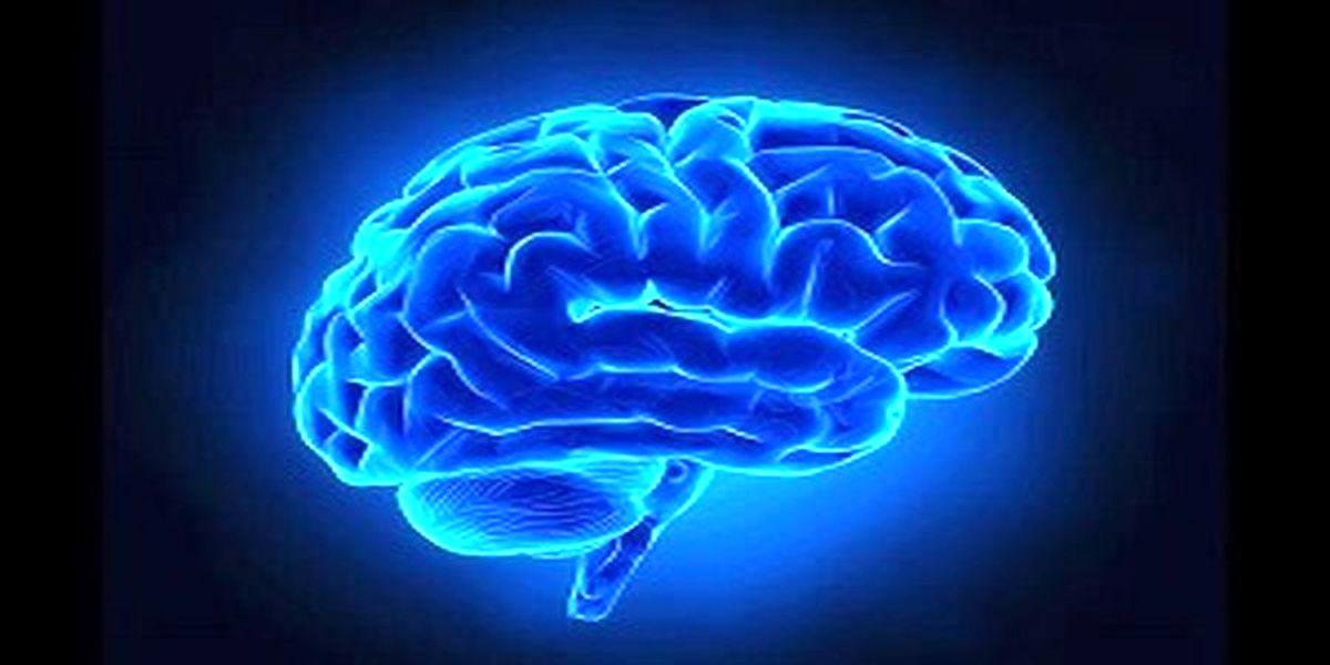 پیشنهاداتی سالم برای فعال نگه داشتن حافظه با افزایش سن