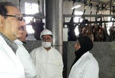 نظارت بر توزیع  لاشه گوشت گرم در کشتارگاه های استان