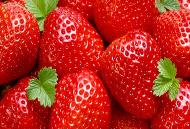 هشدار پلیس درباره توتفرنگیهای سوزندار!