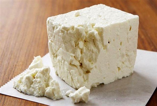 اتفاقاتی که با خوردن پنیر در بدن شما رخ میدهد
