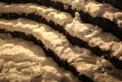 بارش 6 سانتی متری برف طی 24 ساعت در بجنورد