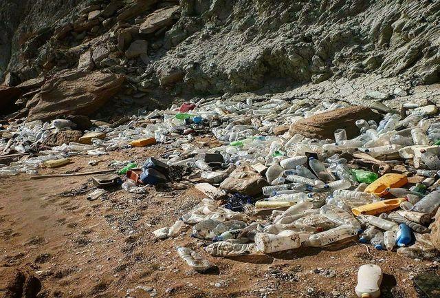 جنایت زباله سازان در جنوب کشور