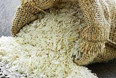آغاز خرید تضمینی برنج از هفته آینده در گیلان