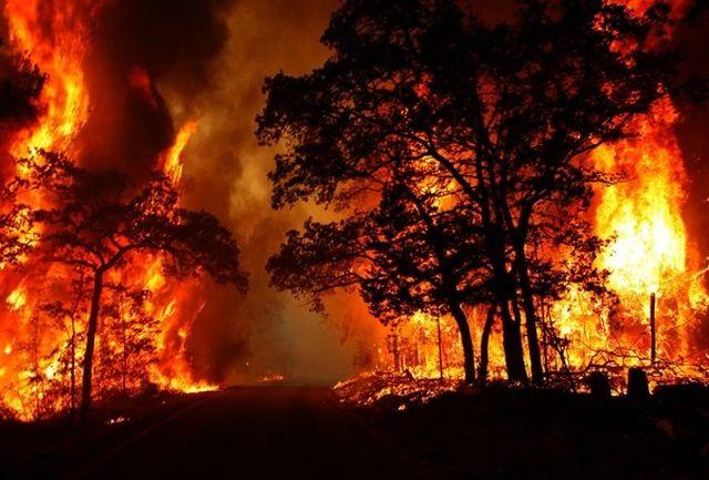آتش سوزی در 750هکتار از مزارع شهرستان اسلام آبادغرب