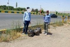 جمع آوری زباله های پلاستیکی حوالی خودروهای سنگین و جنوبی جاده ترانزیت ابهر - تاکستان