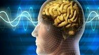 توانایی مغز در پیشبینی آینده کشف شد