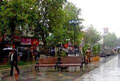 بارندگی و وزش باد در کشور تا چهارشنبه