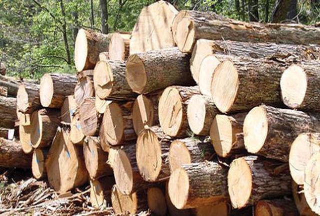 کشف 7 تن چوب جنگلی قاچاق در لنگرود