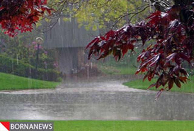 کاهش 10درجهای دما در پایتخت/ استانهای شمالی کشور بارانی میشود