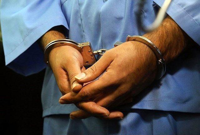 دستگیری ۱۳ سارق و کشف ۱۹ فقره سرقت